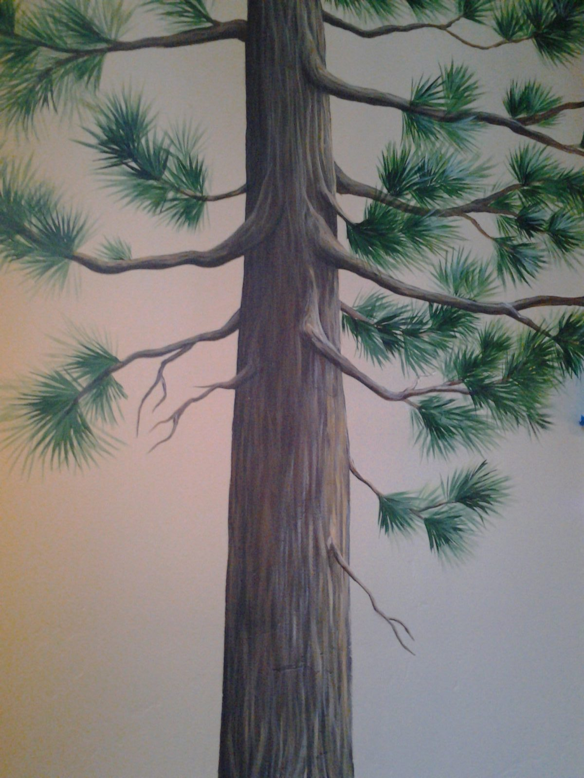 Jeffrey Pine Mural - Truckee and Lake Tahoe fine artist wildlife painter nature custom mural tree