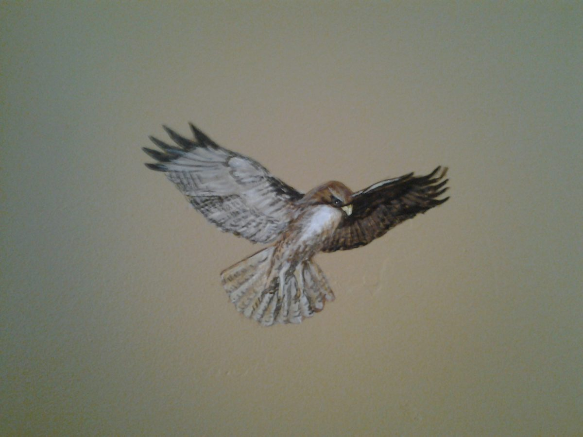 Jeffrey Pine Mural - Truckee and Lake Tahoe fine artist wildlife painter nature custom mural hawk